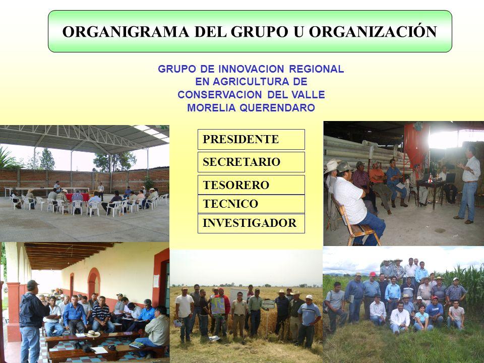 ORGANIGRAMA DEL GRUPO U ORGANIZACIÓN