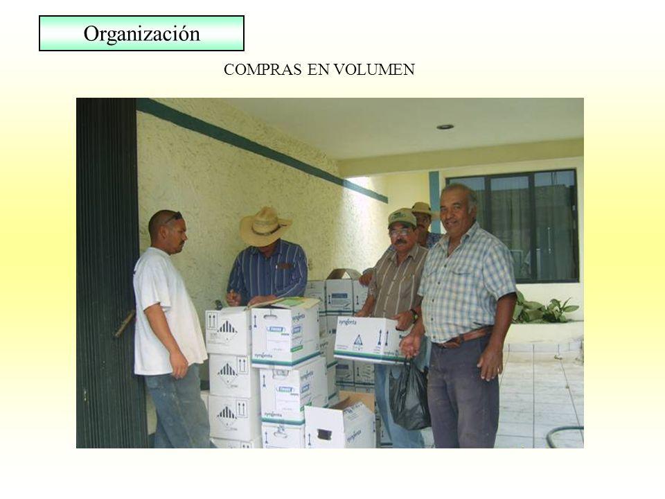 Organización COMPRAS EN VOLUMEN