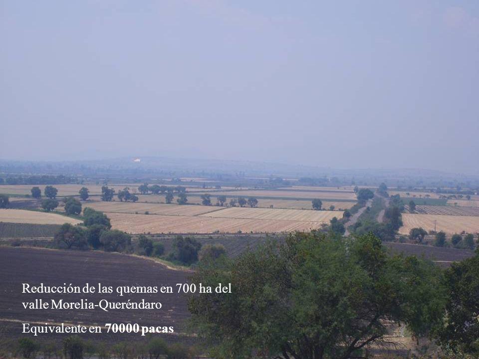 Reducción de las quemas en 700 ha del valle Morelia-Queréndaro