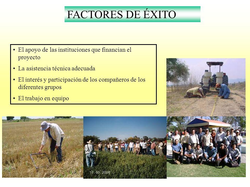 FACTORES DE ÉXITO El apoyo de las instituciones que financian el proyecto. La asistencia técnica adecuada.