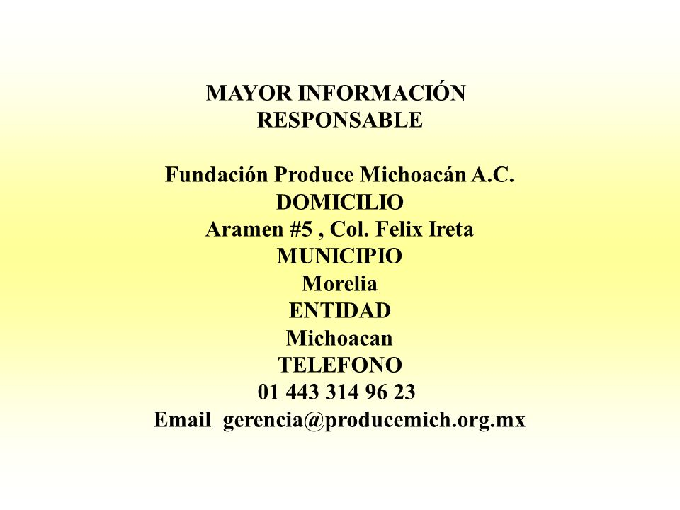 Email gerencia@producemich.org.mx