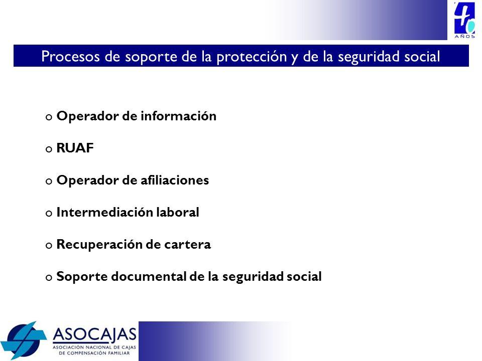 Procesos de soporte de la protección y de la seguridad social
