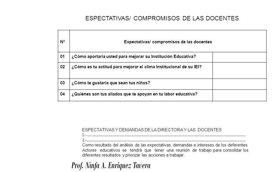 Expectativas/ compromisos de las docentes