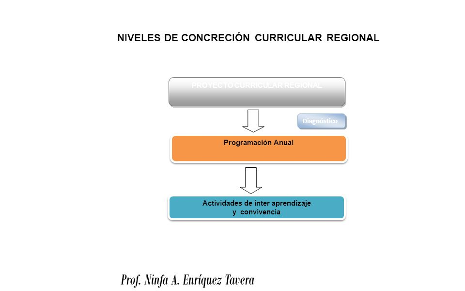 PROYECTO CURRICULAR REGIONAL