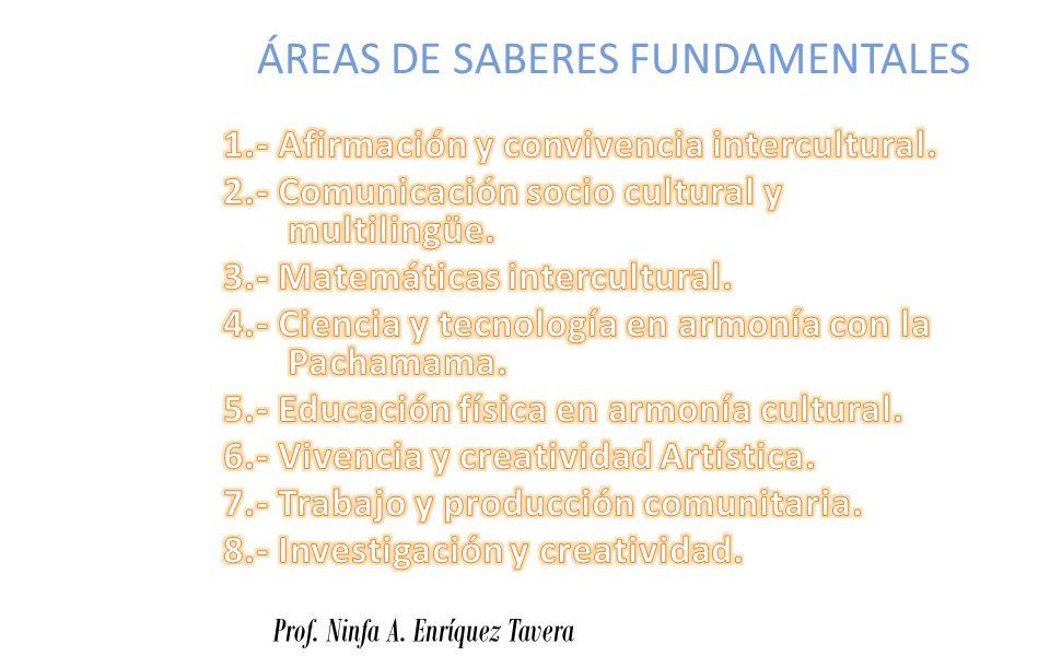 ÁREAS DE SABERES FUNDAMENTALES