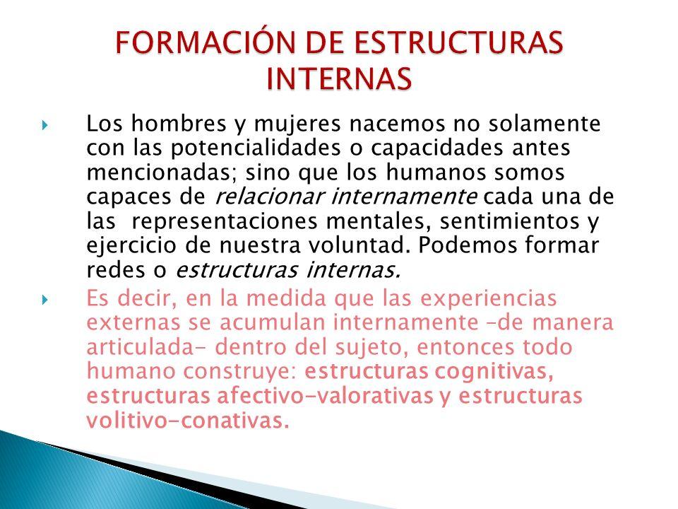 FORMACIÓN DE ESTRUCTURAS INTERNAS