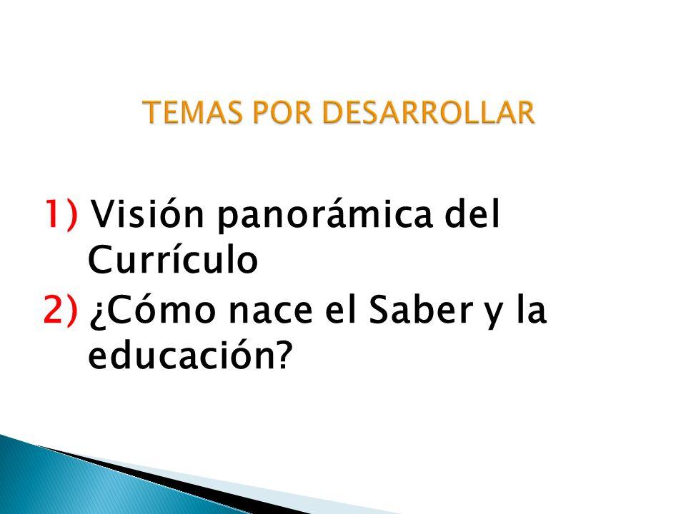 TEMAS POR DESARROLLAR 1) Visión panorámica del Currículo 2) ¿Cómo nace el Saber y la educación