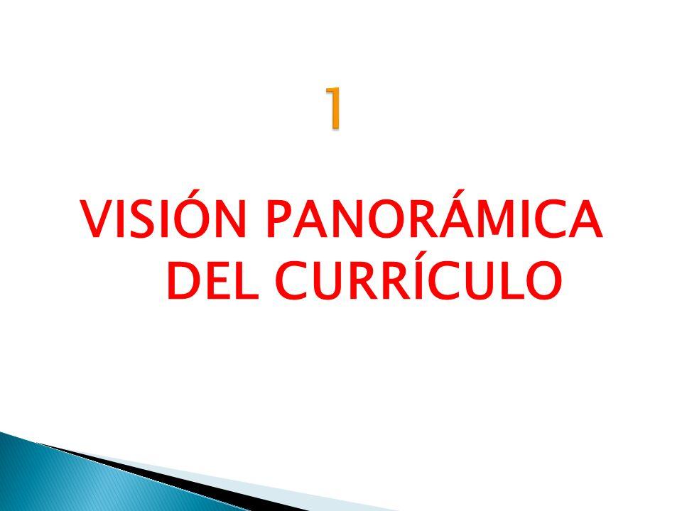VISIÓN PANORÁMICA DEL CURRÍCULO