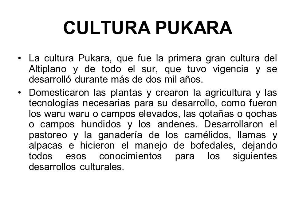 CULTURA PUKARA