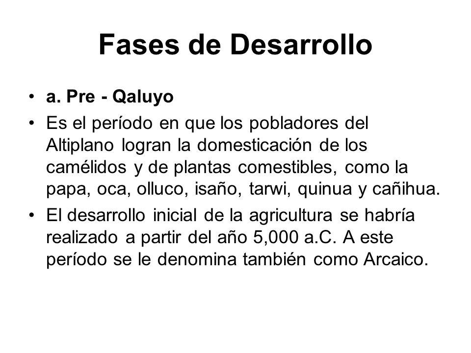 Fases de Desarrollo a. Pre - Qaluyo