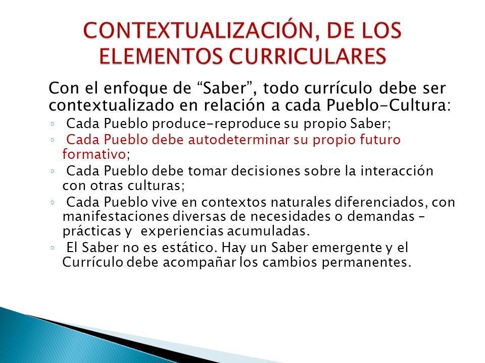 CONTEXTUALIZACIÓN, DE LOS ELEMENTOS CURRICULARES