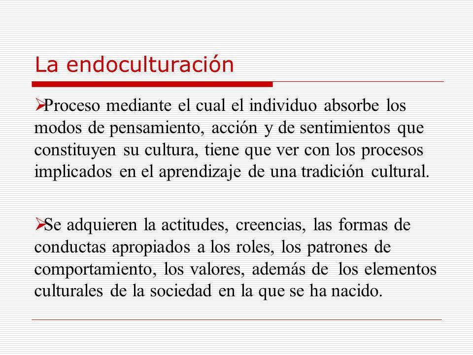 La endoculturación