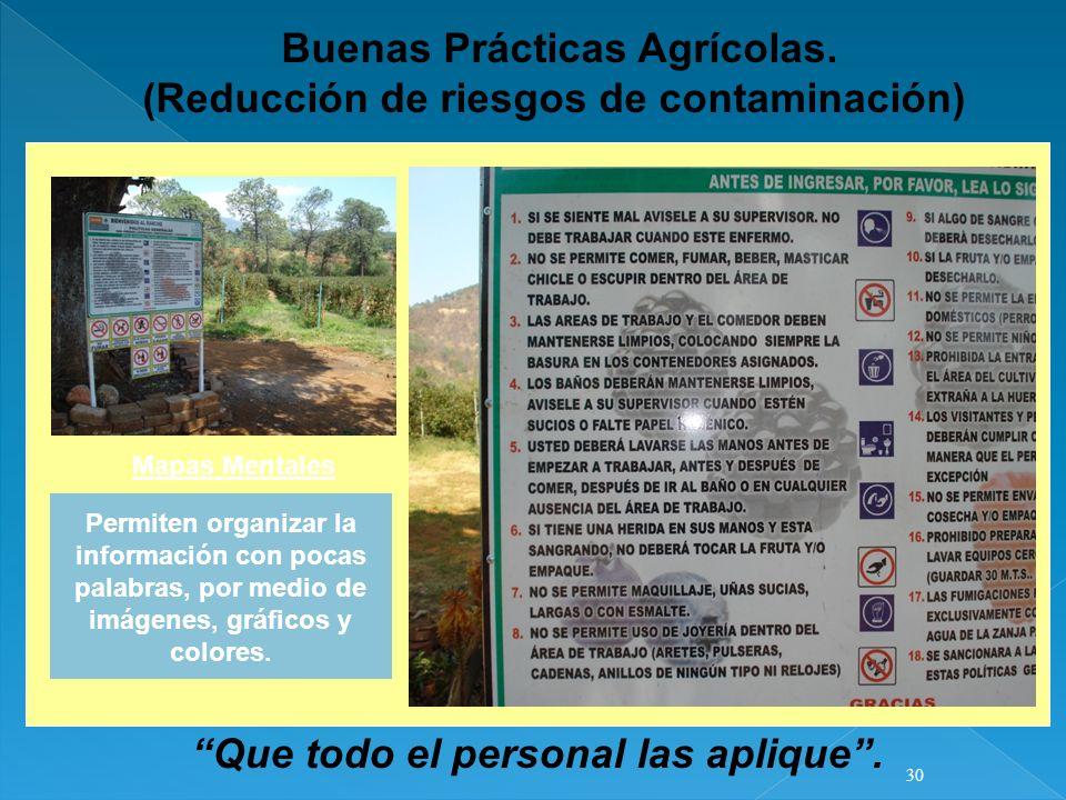 Buenas Prácticas Agrícolas. (Reducción de riesgos de contaminación)