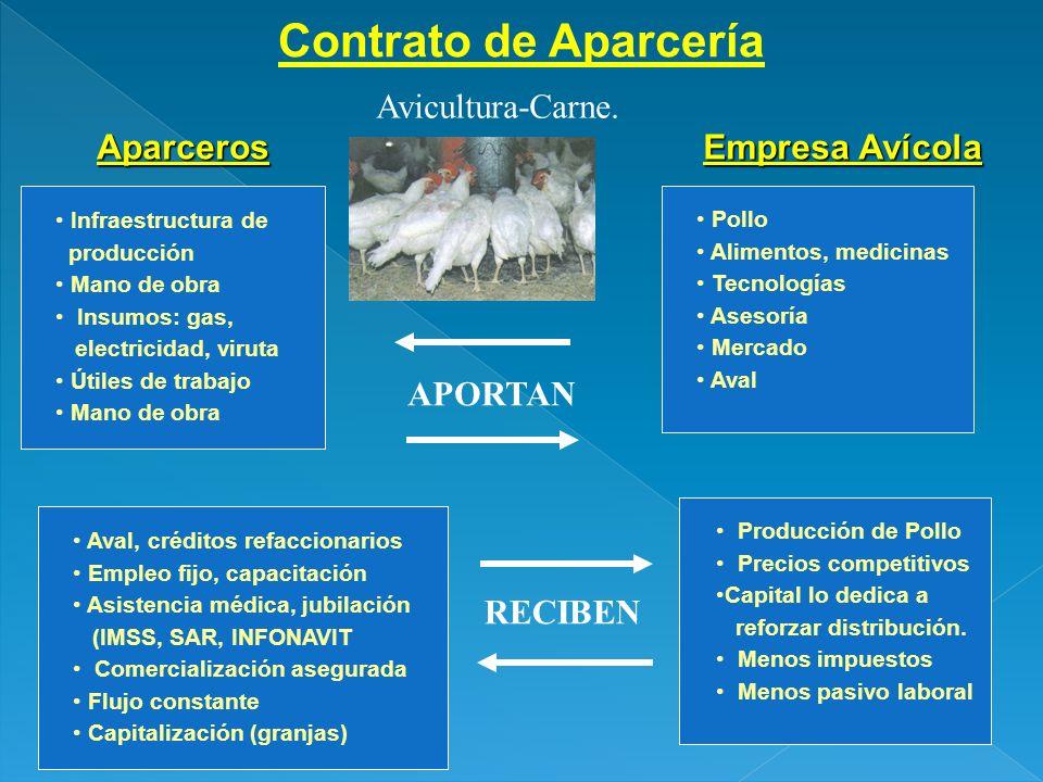 Contrato de Aparcería Avicultura-Carne. Aparceros Empresa Avícola