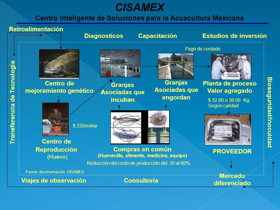 CISAMEX Centro Inteligente de Soluciones para la Acuacultura Mexicana
