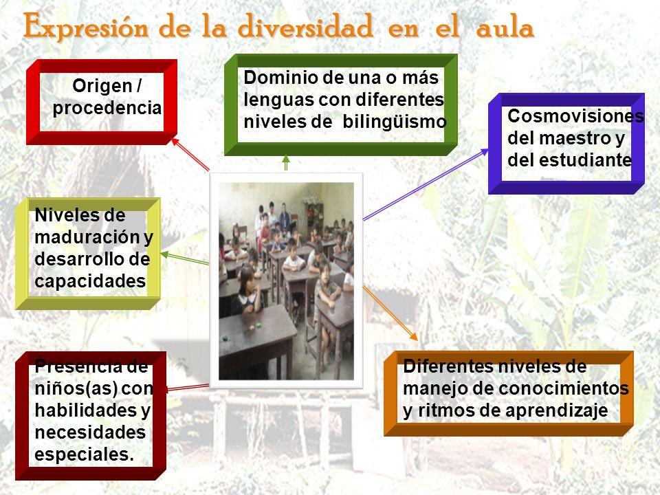 Expresión de la diversidad en el aula