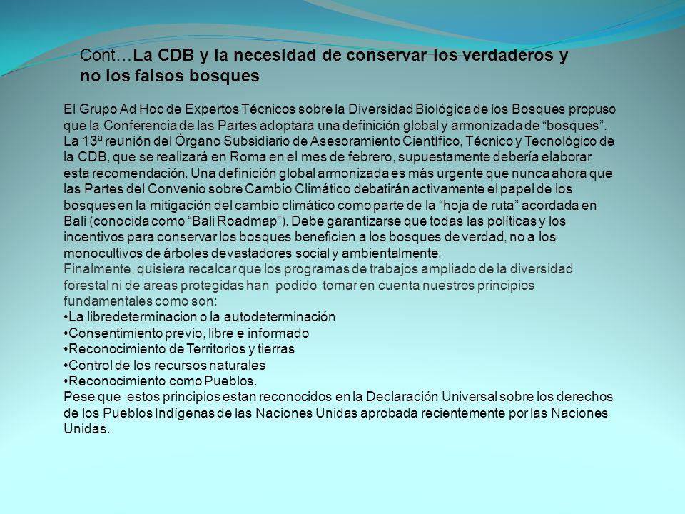Cont…La CDB y la necesidad de conservar los verdaderos y no los falsos bosques