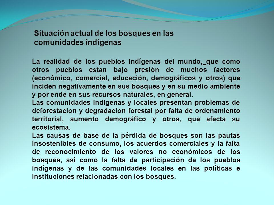 Situación actual de los bosques en las comunidades indígenas