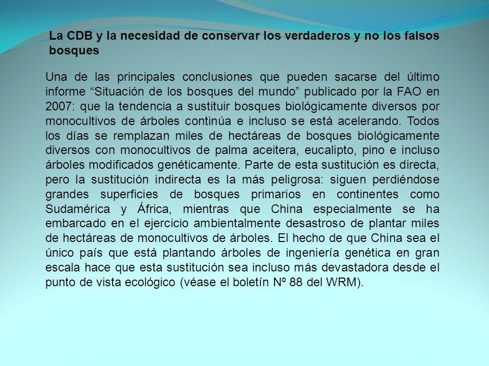 La CDB y la necesidad de conservar los verdaderos y no los falsos bosques