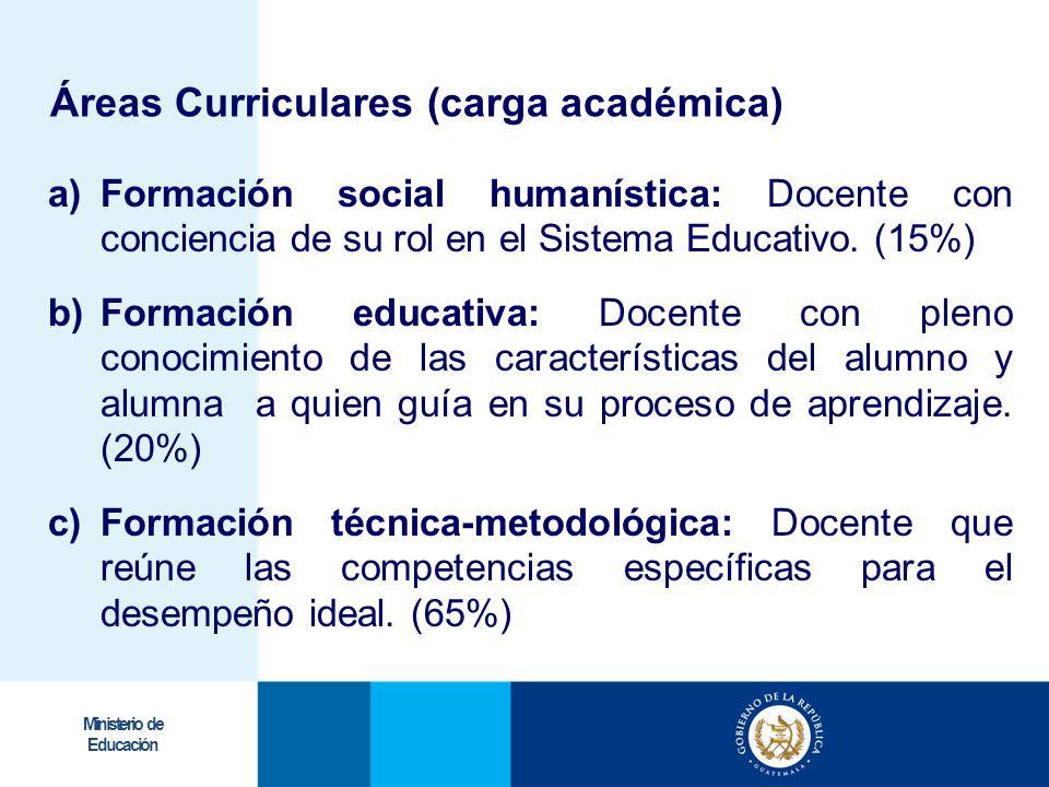 Áreas Curriculares (carga académica)