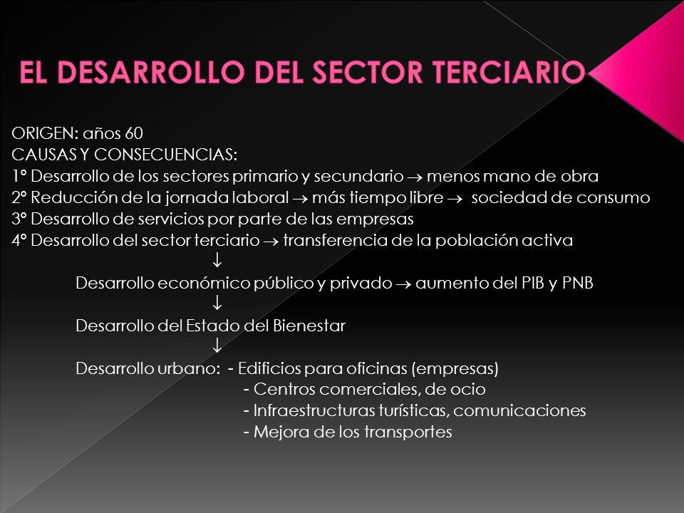 EL DESARROLLO DEL SECTOR TERCIARIO
