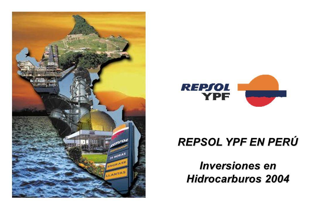 Inversiones en Hidrocarburos 2004