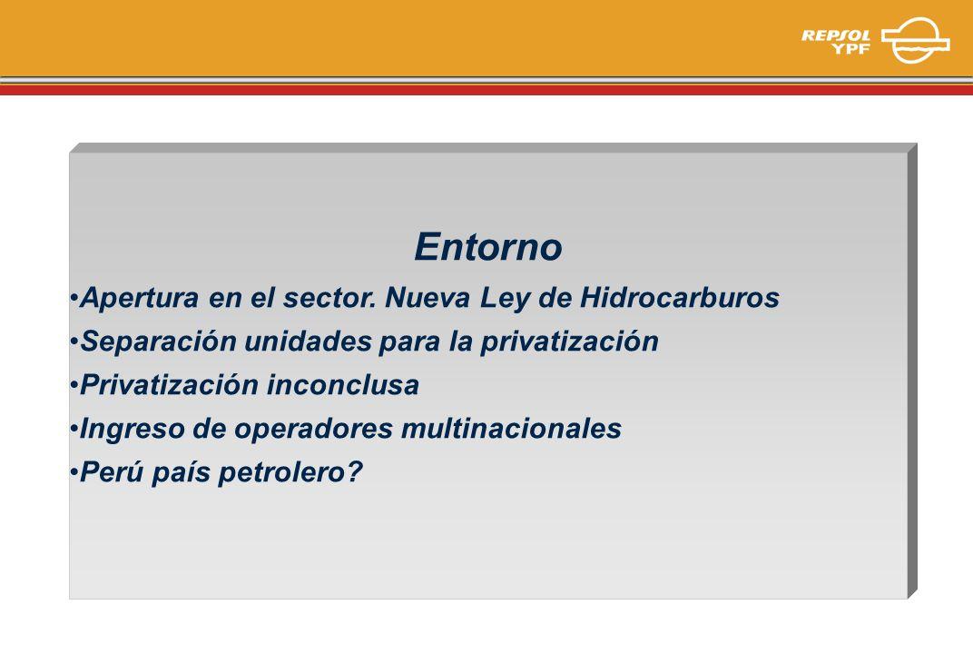 Entorno Apertura en el sector. Nueva Ley de Hidrocarburos