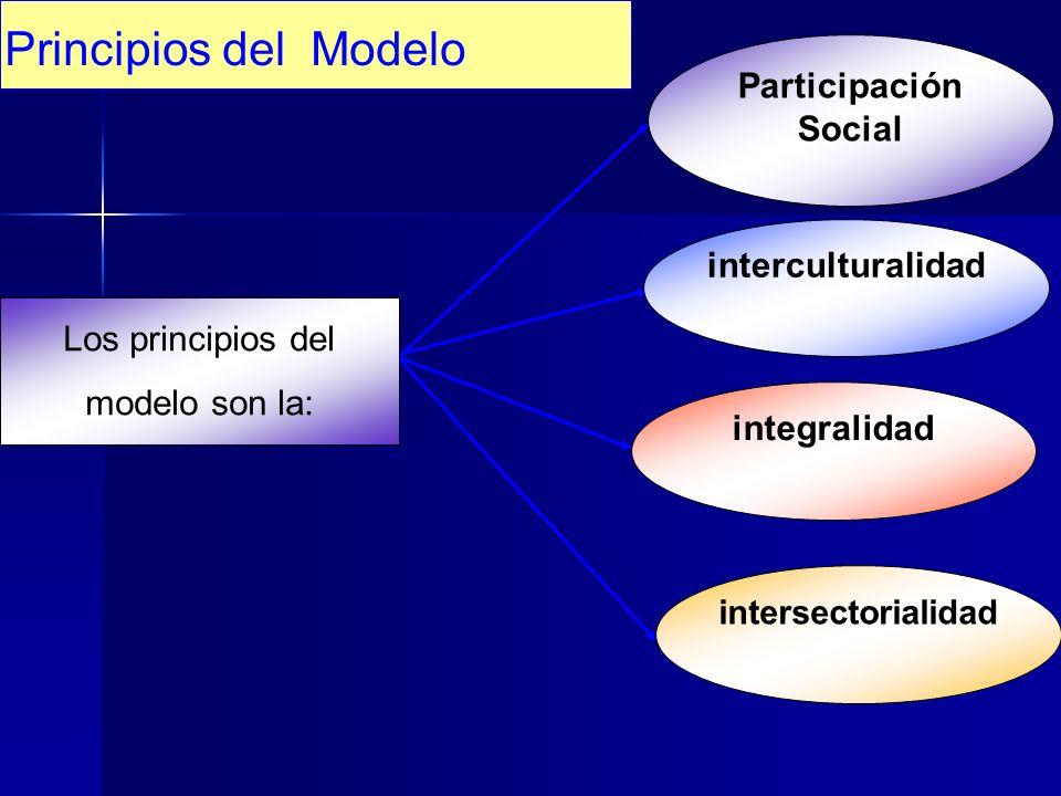 Los principios del modelo son la: