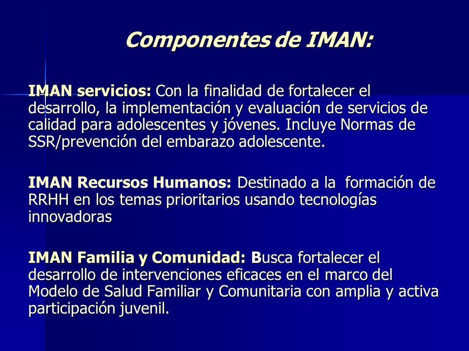 Componentes de IMAN: