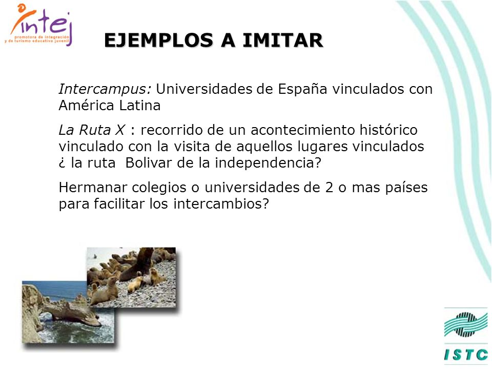 EJEMPLOS A IMITAR Intercampus: Universidades de España vinculados con América Latina.