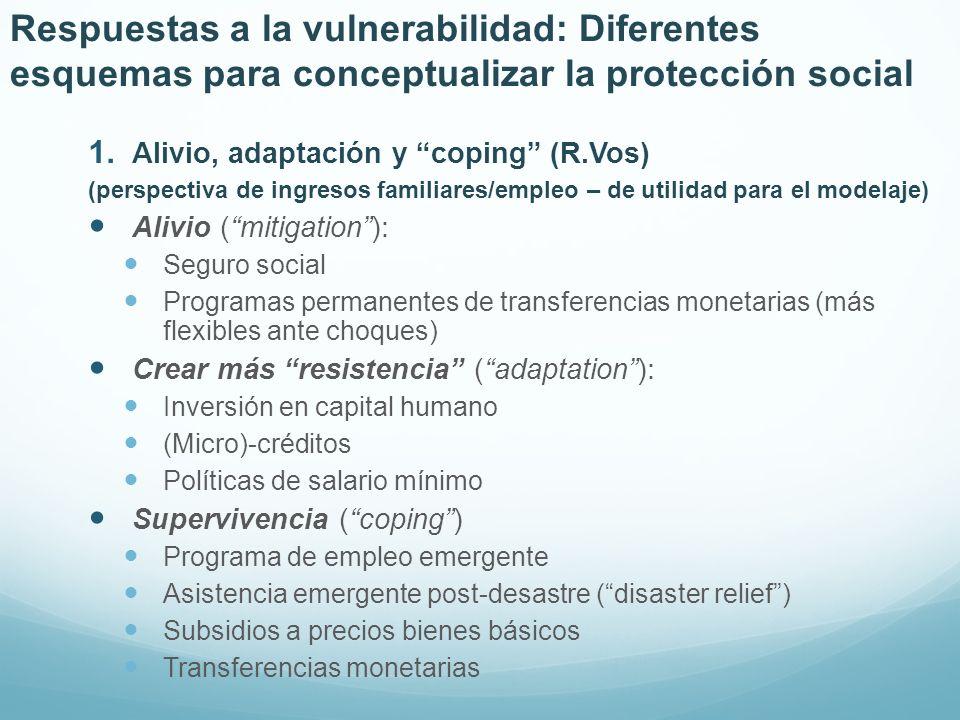 Respuestas a la vulnerabilidad: Diferentes esquemas para conceptualizar la protección social