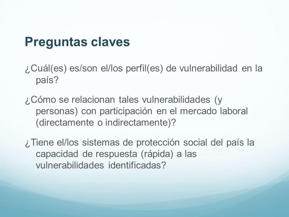 Preguntas claves ¿Cuál(es) es/son el/los perfil(es) de vulnerabilidad en la país