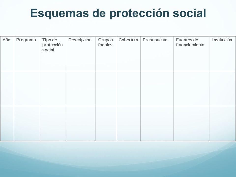 Esquemas de protección social
