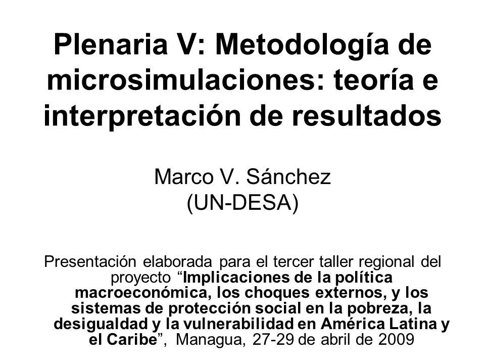 Plenaria V: Metodología de microsimulaciones: teoría e interpretación de resultados