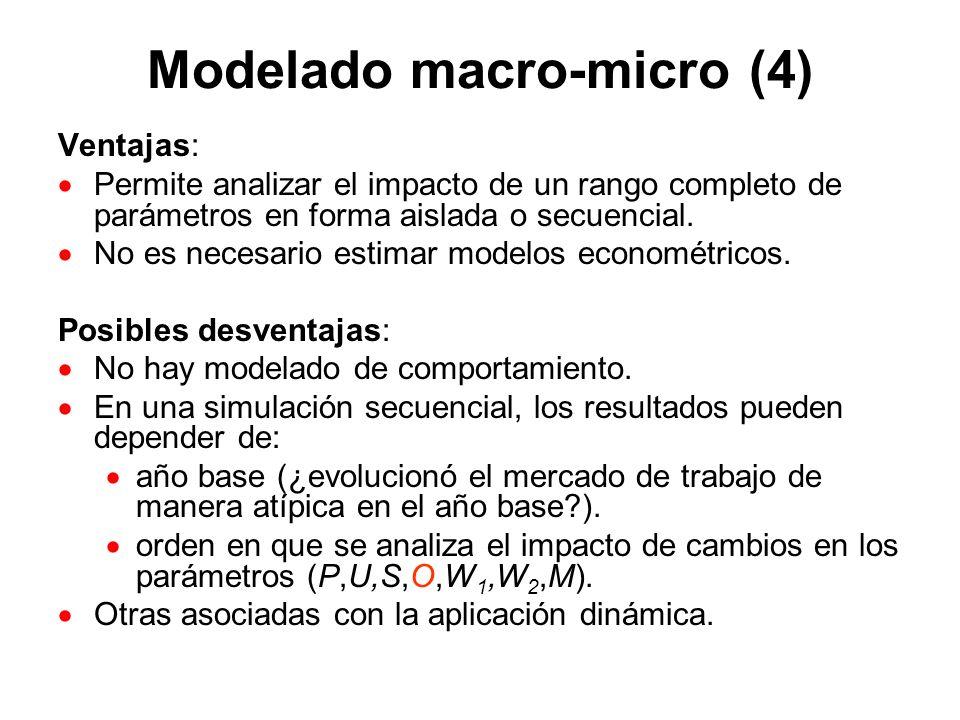 Modelado macro-micro (4)