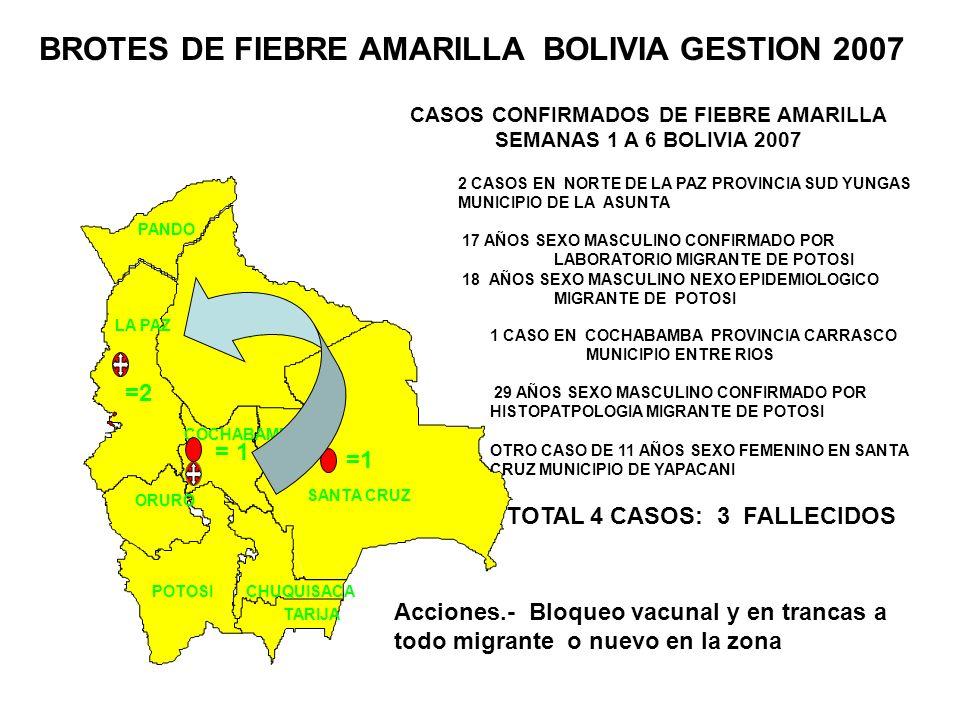 BROTES DE FIEBRE AMARILLA BOLIVIA GESTION 2007