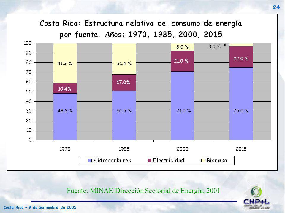 Fuente: MINAE Dirección Sectorial de Energía, 2001