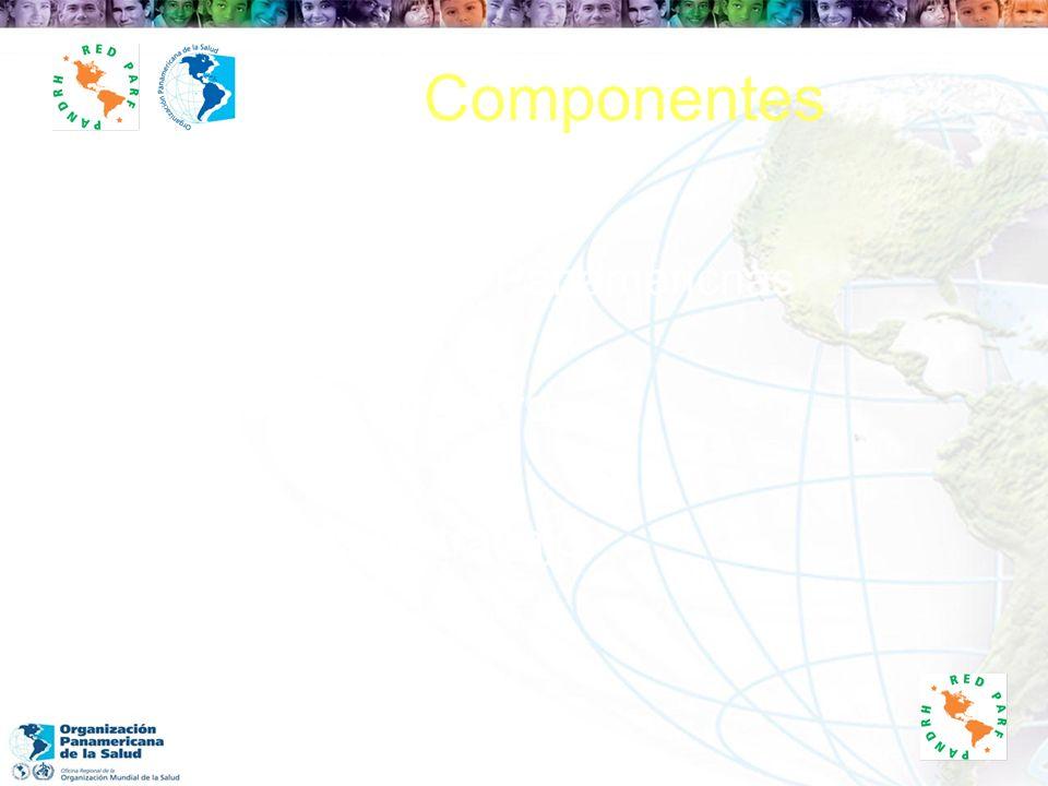 Componentes Conferencias Panamericnas Comité Directivo