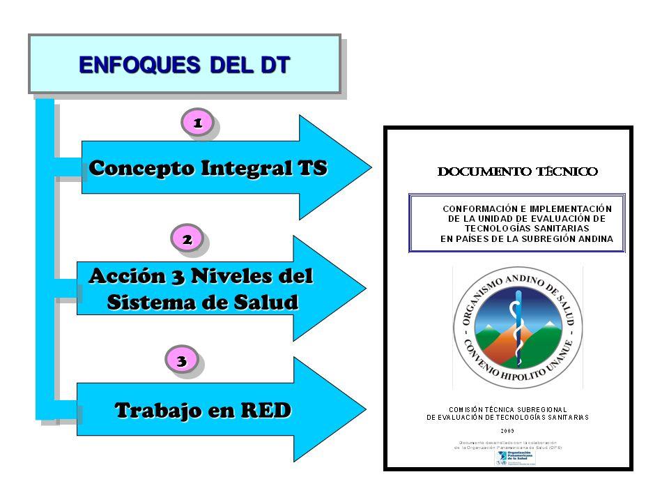 ENFOQUES DEL DT Concepto Integral TS Acción 3 Niveles del