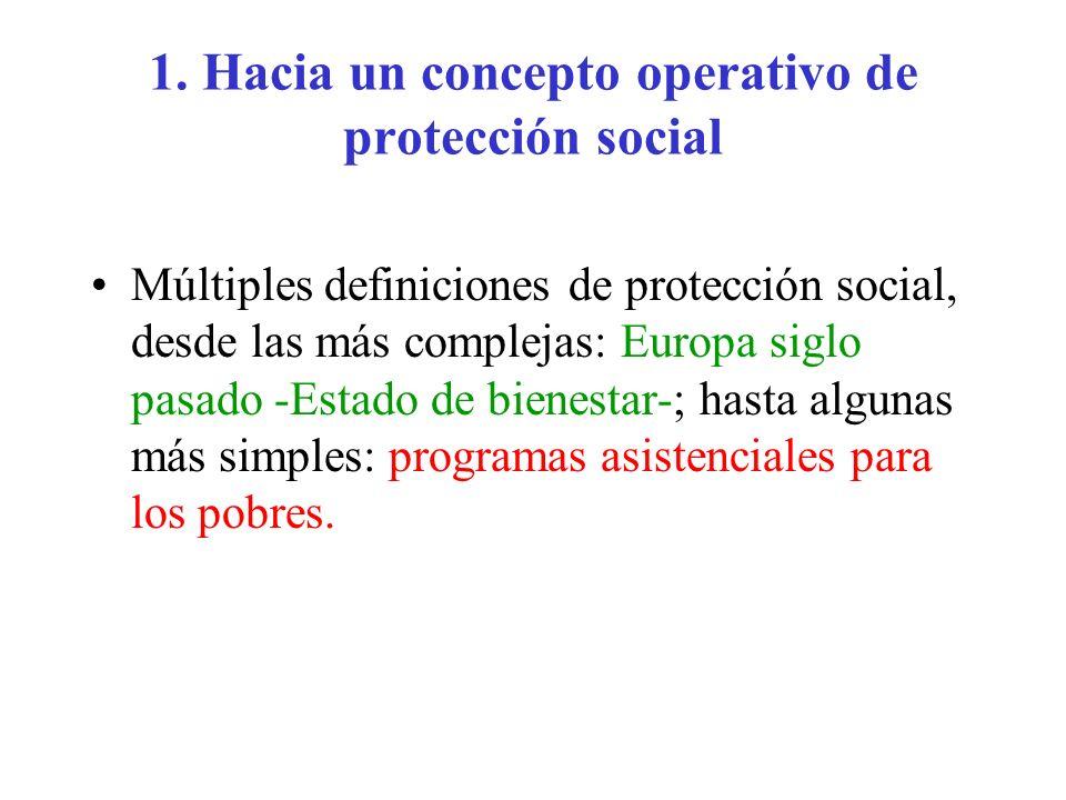 1. Hacia un concepto operativo de protección social