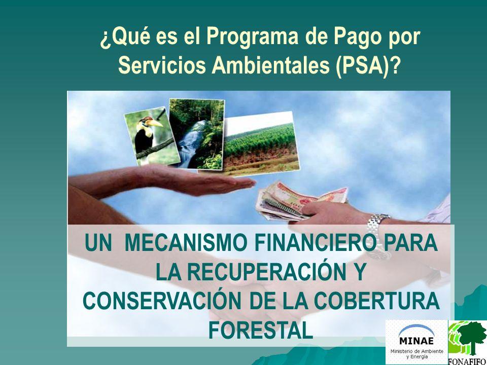 ¿Qué es el Programa de Pago por Servicios Ambientales (PSA)