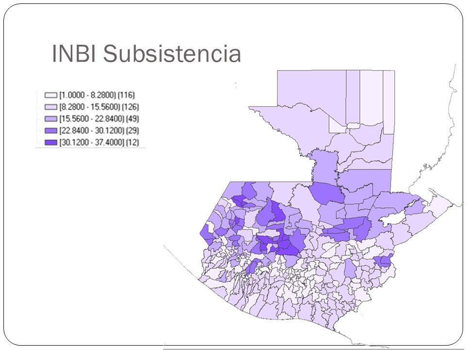 INBI Subsistencia