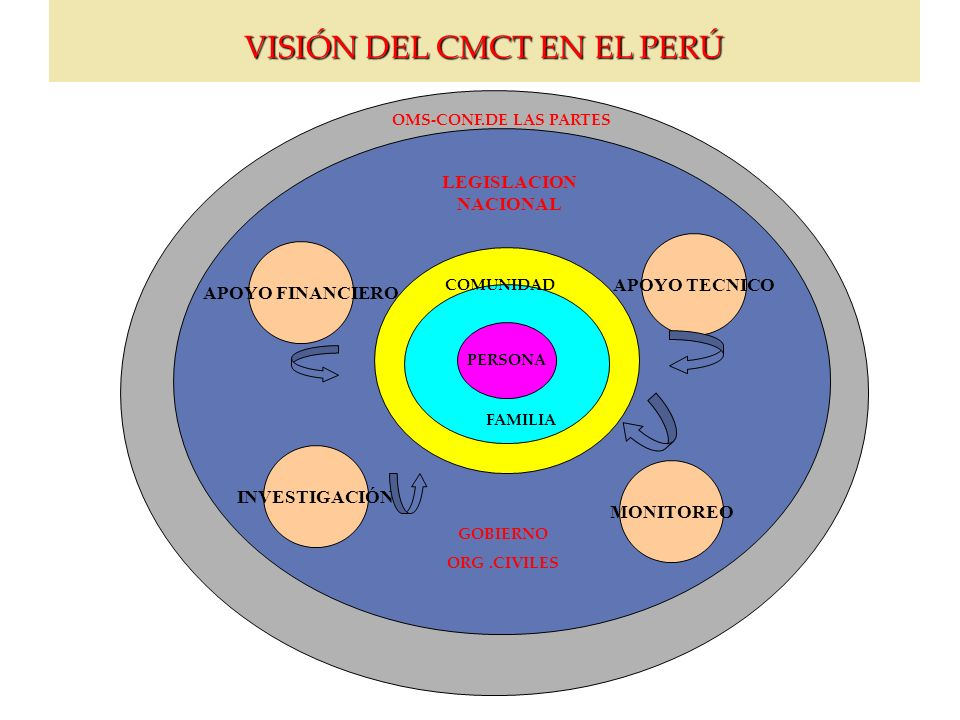 VISIÓN DEL CMCT EN EL PERÚ