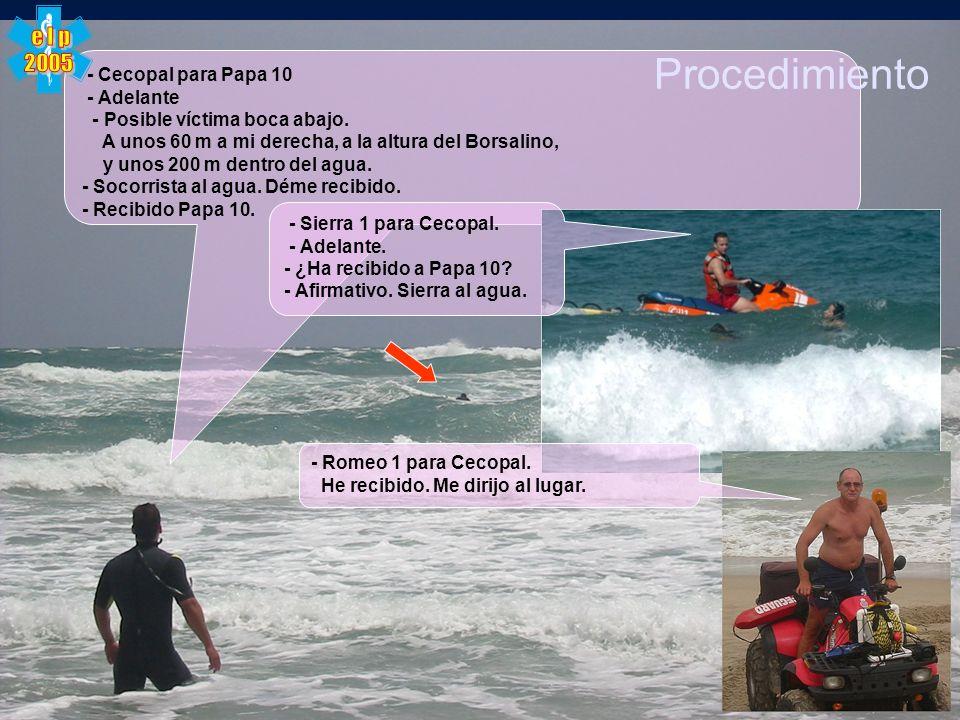 Procedimiento e l p 2005 - Cecopal para Papa 10 - Adelante