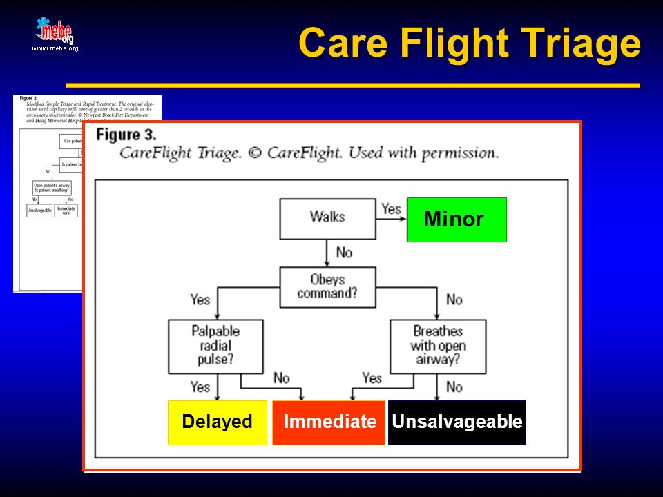 Care Flight Triage Minor Delayed Immediate Unsalvageable