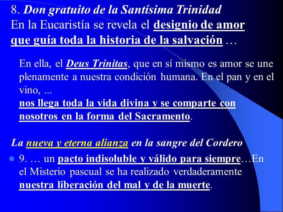 8. Don gratuito de la Santísima Trinidad