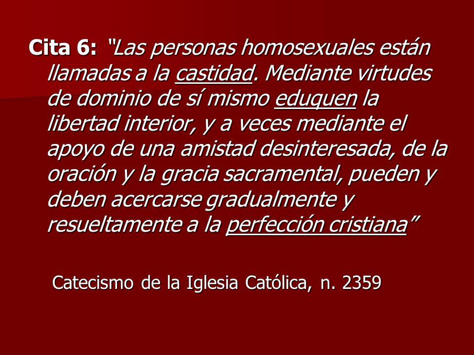 Cita 6: Las personas homosexuales están llamadas a la castidad