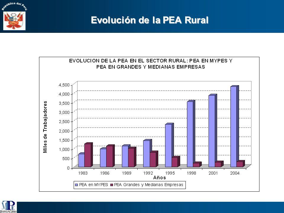 Evolución de la PEA Rural