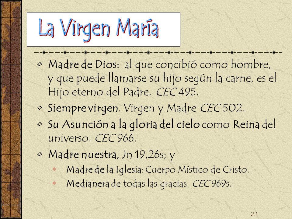 La Virgen María Madre de Dios: al que concibió como hombre, y que puede llamarse su hijo según la carne, es el Hijo eterno del Padre. CEC 495.