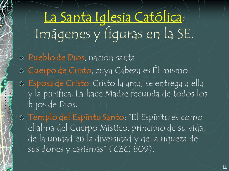 La Santa Iglesia Católica: Imágenes y figuras en la SE.